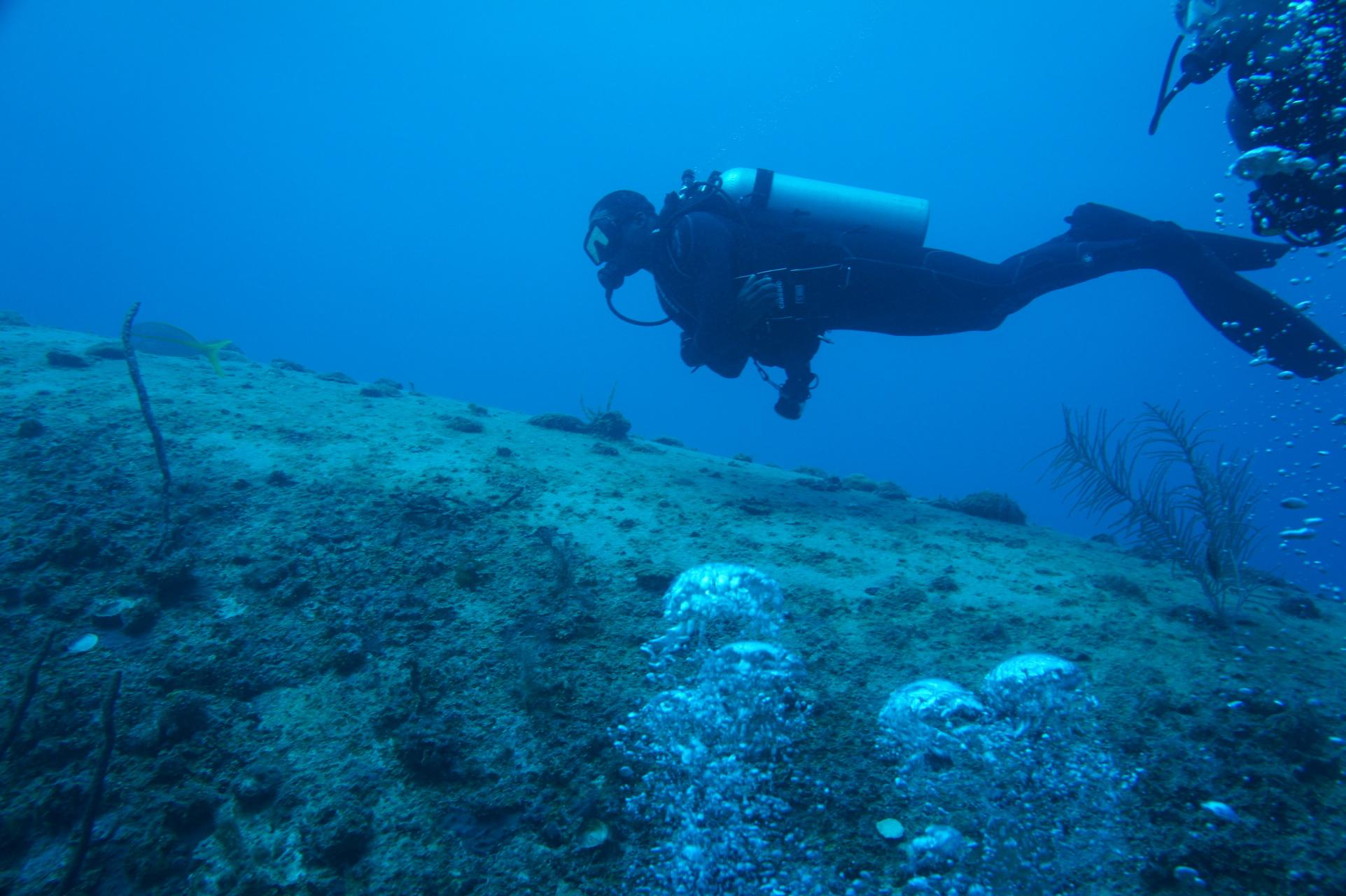 Diver ii the adventurist advanced scuba certification learn advanced scuba certification ii of ii raid 35 meters lake jocasselake keowee 1betcityfo Images